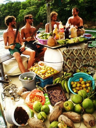 Karaka harvest